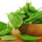В день необходимо съедать пучок зелени