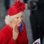 В Англии рассказали о «мафиозном трюке» герцогини Корнуолльской сДианой