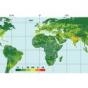 Ученые прогнозируют, что к 2040 году ниже уровня моря окажется дополнительно почти 12 миллионов квадратных километров суши