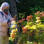 Украинцы начали страховаться от коронавируса