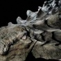 Эта 110-миллионолетняя окаменелость динозавра выглядит как статуя (ФОТО)