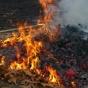 Осенние костры сжигают здоровье человека