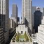 Секретная красота: частные сады на крышах Нью-Йорка (ФОТО)