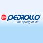 Насосы для колодцев Pedrollo