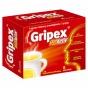 Gripex HotActiv (Грипекс ХотАктив)