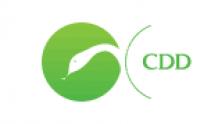 CDD (СиДиДи) - медицинский центр