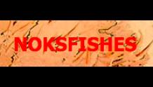 Нокс Фишес - NOKs fishes