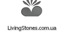 Интернет-магазин кактусов, литопсов и других суккулентов LivingStones
