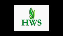 Хаммер веб студия (HWS)