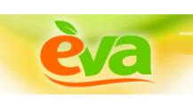 Сеть магазинов Ева