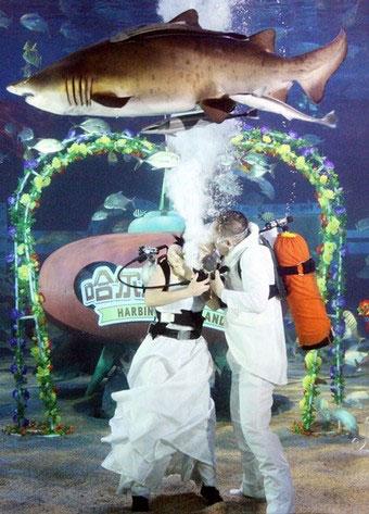 Самые необычные свадьбы мира - фото