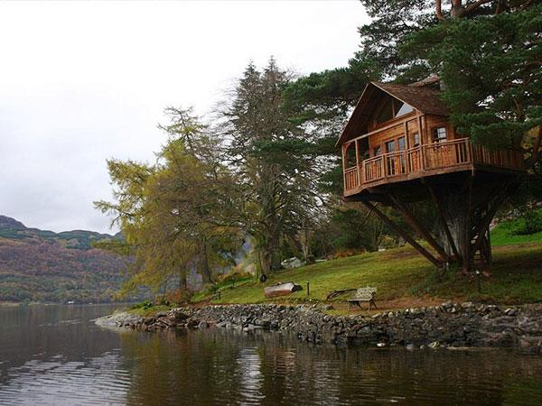 Нереально красивые домики на деревьях.
