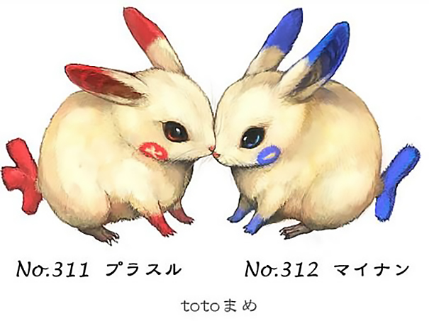 real-life-pokemon-illustrations-totomame-3